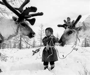 Life In The Taiga : photoburst tool holding two reindeer by jeroen toirkens khovsgol aimag mongolia mobile site ~ Frokenaadalensverden.com Haus und Dekorationen