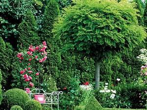 Bäume Für Den Vorgarten : b ume f r den garten ~ Michelbontemps.com Haus und Dekorationen