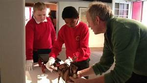 Kids take on jobs in museums and galleries as part of ...