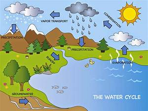 Water Cycle Images