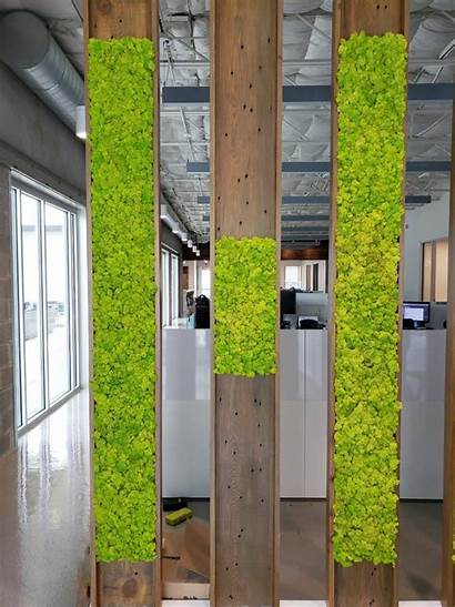 Wall Moss Engineering Office Hmt Decor Outdoor