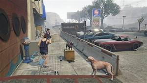Animal Ark Pet Shop - GTA5-Mods.com
