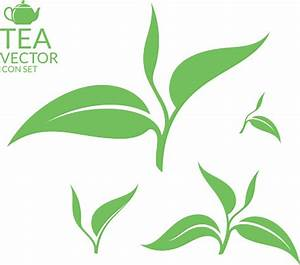 Green Tea Leaf Clipart - ClipartXtras