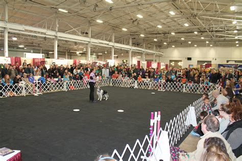 garden state exhibit center nj family pet show coming to garden state expo center