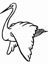 Stork Coloring Storks Birds Printable Recommended sketch template