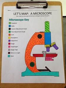 Best 20  Microscope Parts Ideas On Pinterest