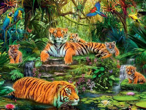 animal kingdom jungle tigers birds hd wallpaper