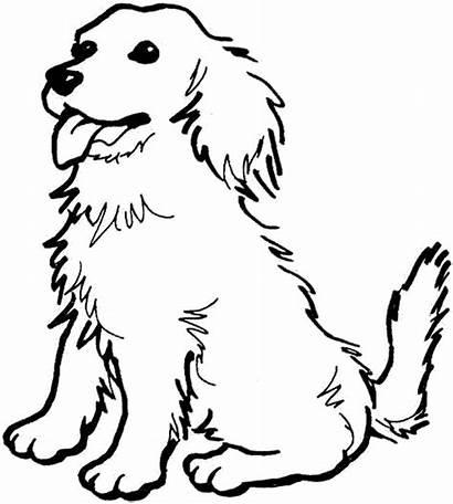 Coloring Spaniel Cocker Printable American Puppy Dog