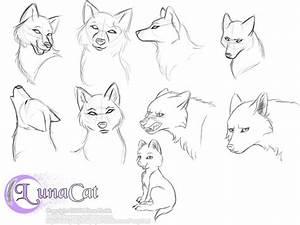 Anime Wolf Head Drawings | animals | Pinterest | Anime ...