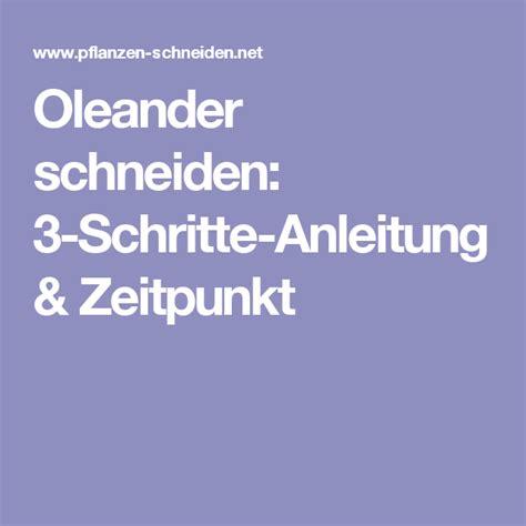 Wann Oleander Schneiden by Oleander Schneiden 3 Schritte Anleitung Zeitpunkt