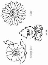 Coloring Flower Daisy Scout Pages Friends Petals Scouts Garden Flowers Petal Morning Colouring Lupe Sheets Makingfriends Sheet Glory Daisies Lupine sketch template