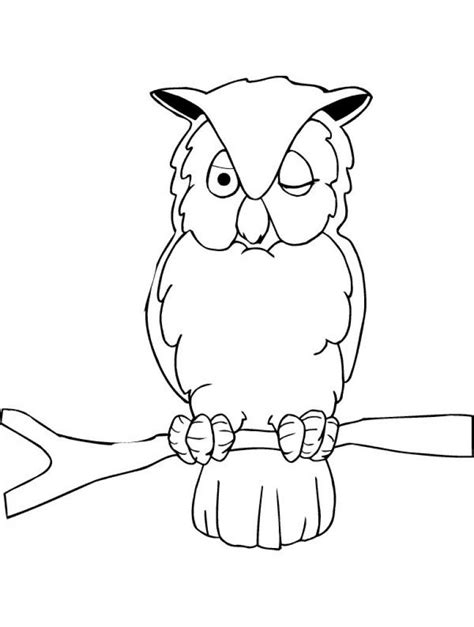 owl coloring pages  kids animals coloring pages  kids