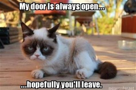 Just Girly Things Meme Generator - open door policy a la grumpy cat just for laughs pinterest open door policy grumpy cat