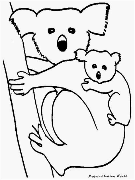 mewarnai gambar koala imut mewarnai gambar