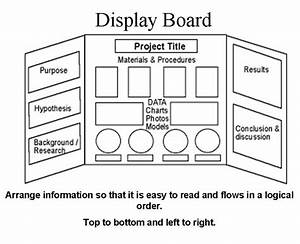 1000  Images About Trifold On Pinterest