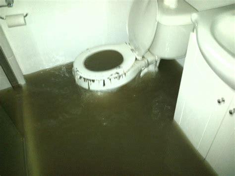 Toilet Pumps Basement by Basement Toilet Smalltowndjs Com