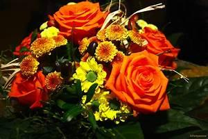 Bilder Von Blumenstrauß : ein bunter blumenstrauss foto bild archiv projekte naturchannel blumen f r die fc ~ Buech-reservation.com Haus und Dekorationen