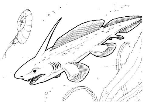disegni da colorare on line gratis dinosauri trova 20 dinosauri da colorare per bambini gratis