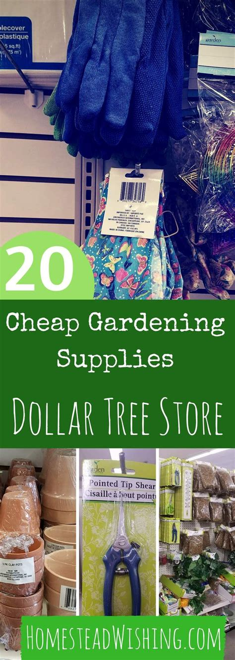 25 best ideas about tree garden on shade