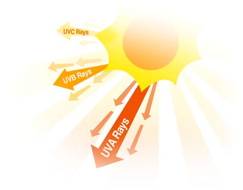 Are Fluorescent Lights Bad For You by Good And Bad Effects Of Uv Rays You Choose