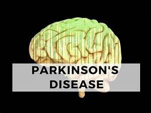 Parkinson U0026 39 S Disease Case Study