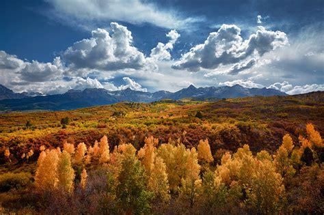golden autumn wallpaper  wide photo