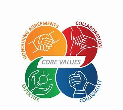 Values Company Imm Stork Customer