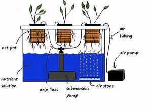 Hydroponics Diagram