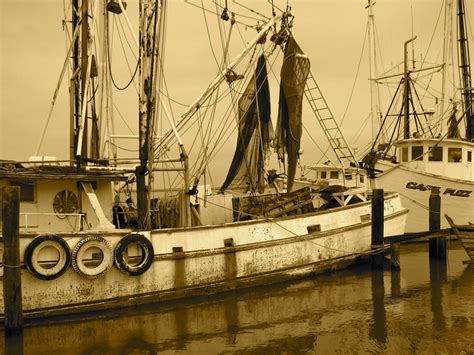 Shrimp Boat Docks Near Me by 12 Best Steinhatchee It S For Me Images On