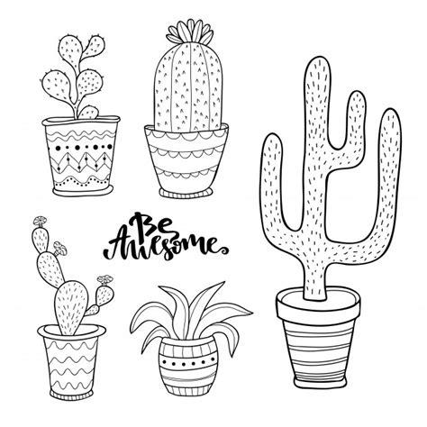 ensemble de succulentes  de cactus dessines  la main