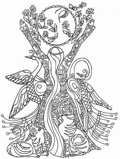 Exotic Winged Creatures Icolor Coloring Pages Books