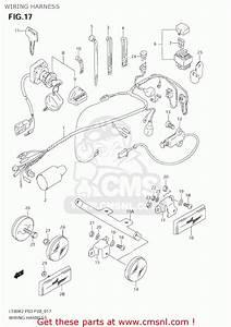 Suzuki 80 Quad Wiring Diagram