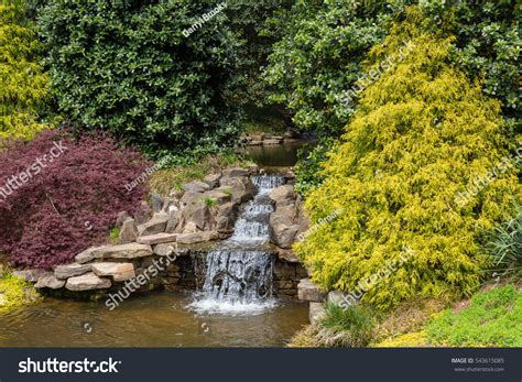 Small Waterfall Japanese Garden Pond Stock Photo 543615085