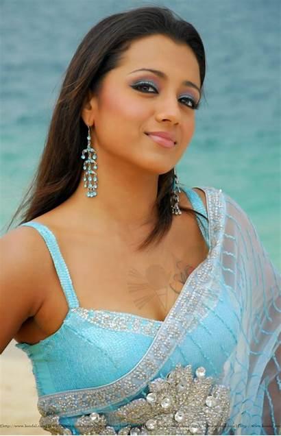 Trisha Tamil Actress Hard Animal Ambassador Remains