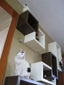 diy cat shelves cubical floating wall shelves modern cat by sherpashelves