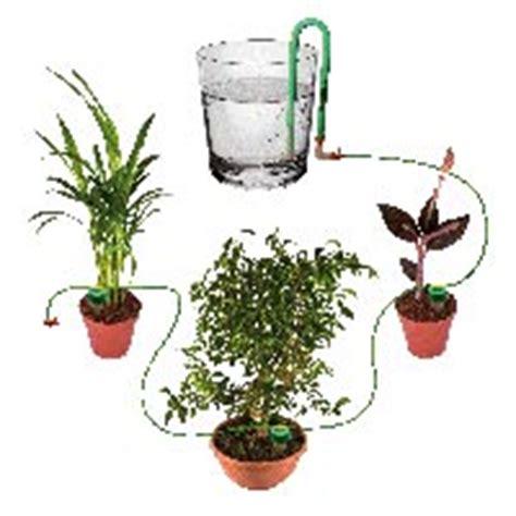 arrosage automatique plante interieur choisir syst 232 me d arrosage de vacances pour balcons terrasses le magazine gamm vert