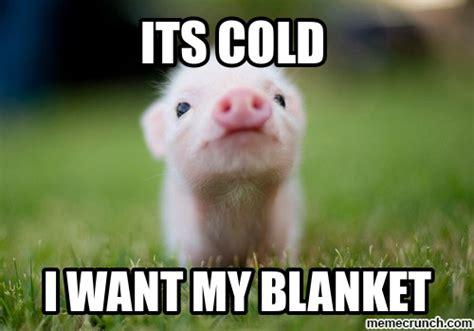 Pig Memes - piglet meme 28 images pig meme 2 sandcastles with pooh imgflip pooh and piglet meme funny