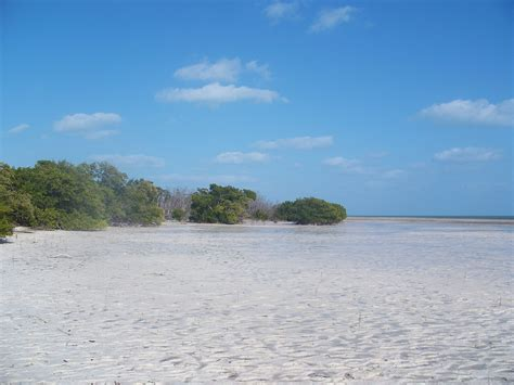 fl key layton beach02 sp open tarpon guides commons moldy wikimedia