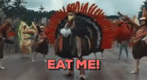 turkey gif find on giphy