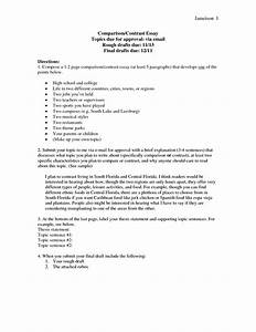 college compare and contrast essay examples compare and