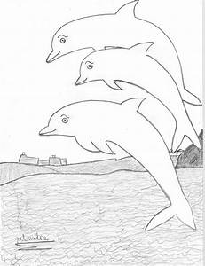 A Group of Dolphin Friends - Dolphinspedia