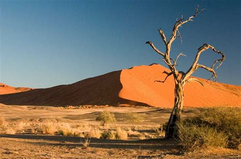 Top 10 Amazing Desert Landscapes In The World