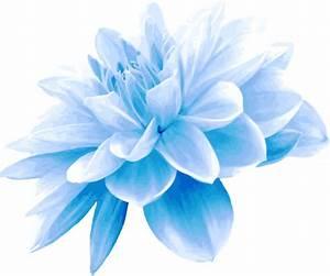 Clipart - Blue flower