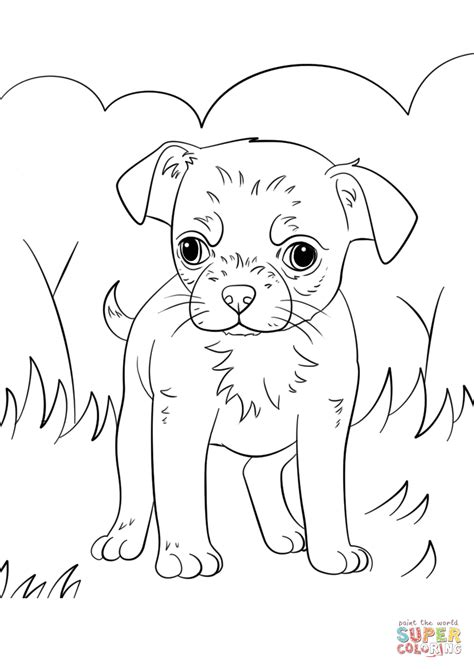 chihuahua puppy coloring page  printable coloring pages