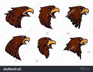 Hawk Vector Icons Sport Team Mascot Stock Vector 595559372 ...
