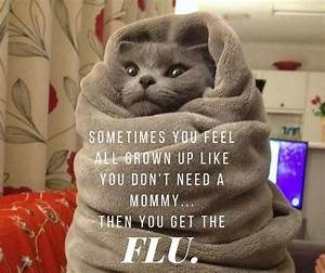 Pin by Candace ... Stupid Flu Quotes