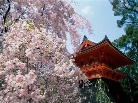 japan backgrounds hq windows wallpapers hd  amazing