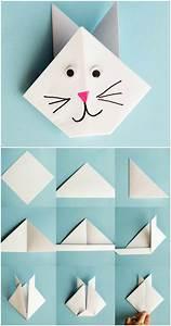 Modele Origami Animaux Kit De Pliage Trophe Origami
