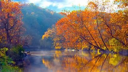 Nature Trees Wallpapersafari Reflections Lakes