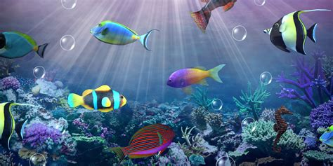 3d Live Wallpapers For Desktop Hd Free by Live Hd Wallpapers Wallpapersafari